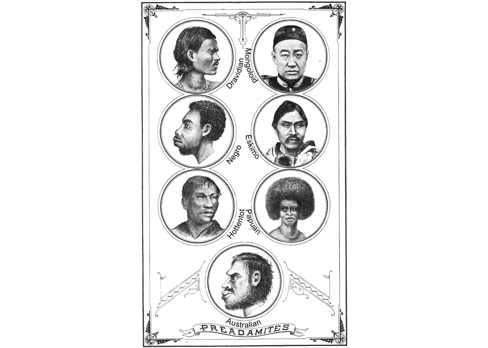 Preadamites Book