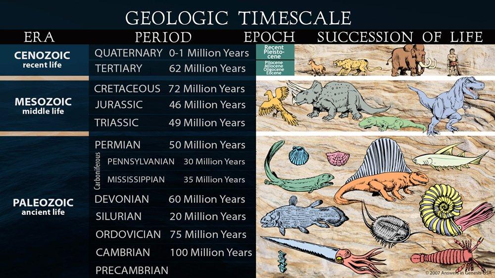 Evolutionary History of Life
