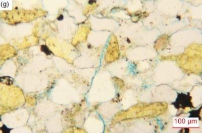 Figure 40g