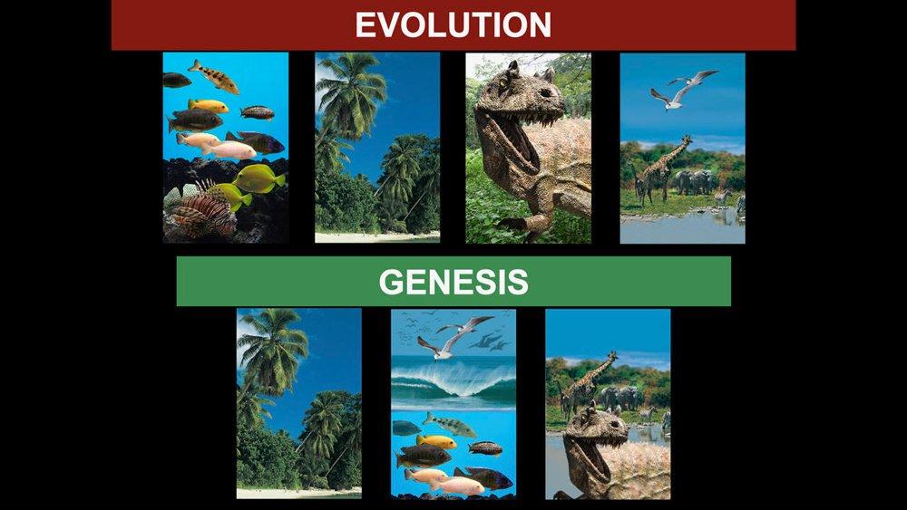 Three-part theory of evolution