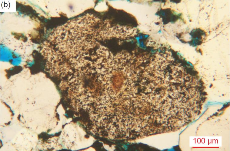 Figure 36b