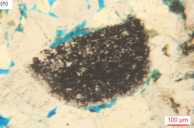 Figure 36n