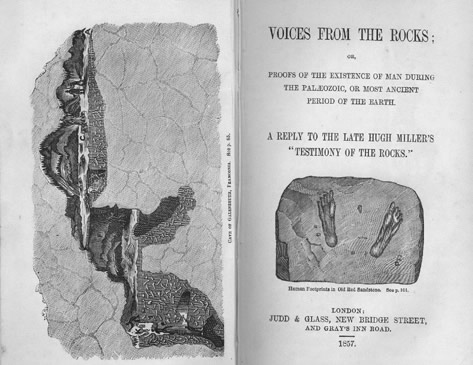 William Tayler, Voices from the Rocks